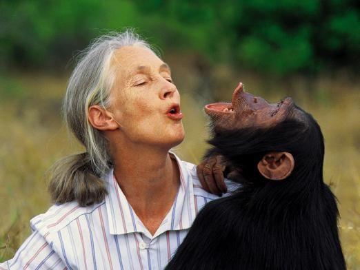 Чим відрізняється людина від тварини?