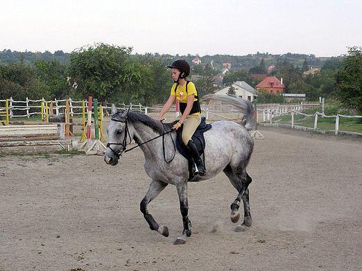 Як їздити на коні?