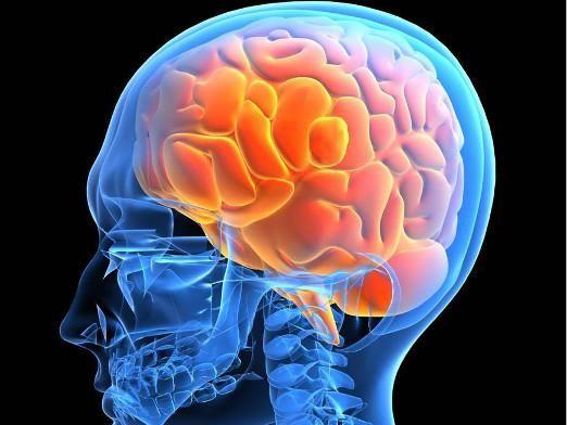 Як лікувати мозок?