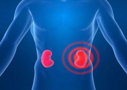 Як лікувати нирки?