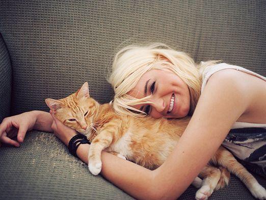Як люблять кішки?