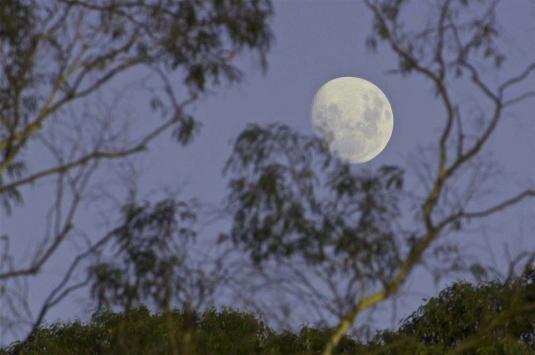 Як на нас впливає місяць?