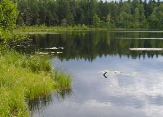 Як утворюються озера?