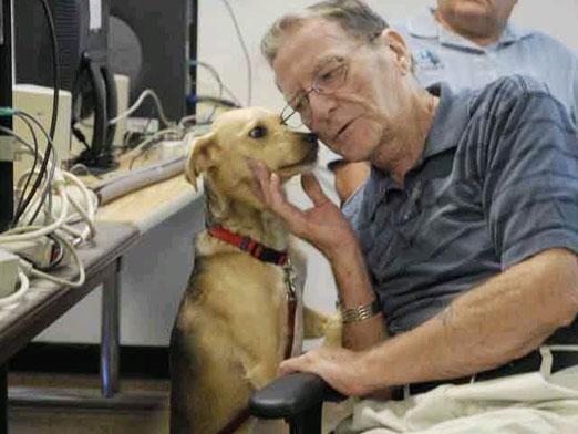 Як зрозуміти собаку?
