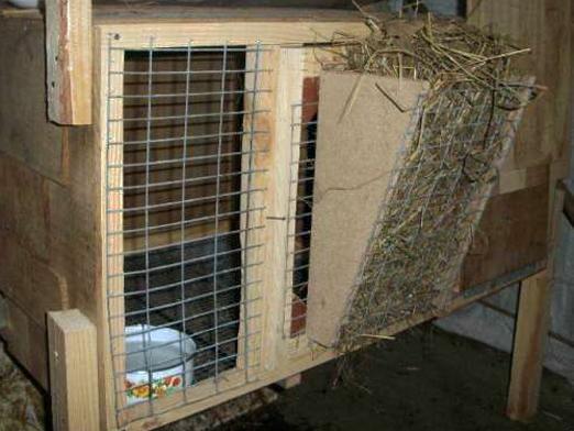 Як зробити клітку для кролика?