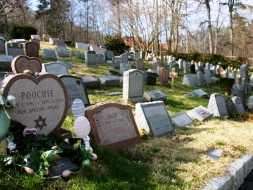 Коли ходять на кладовище?