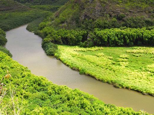 Куди течуть річки?