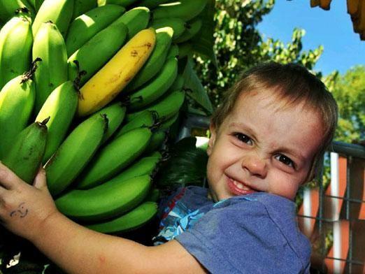 Чи можна дитині банан?