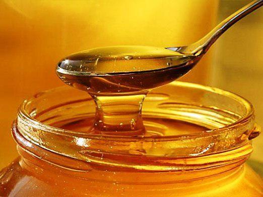 Чи шкідливий мед?